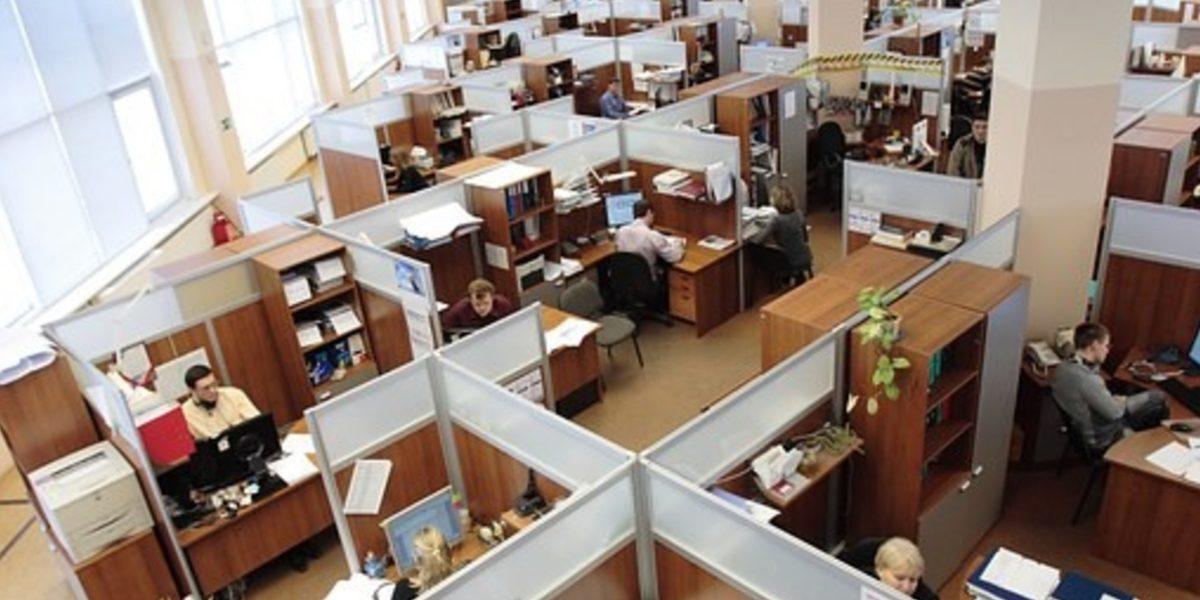 employee engagement, employee
